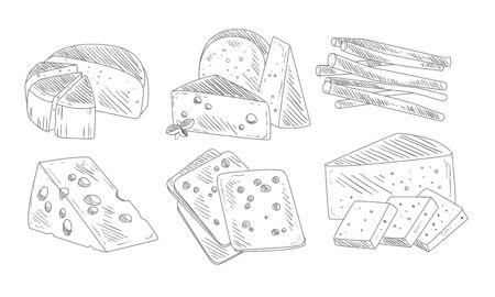 Hand Drawn Different Type of Cheese Set, Organic Dairy Product, Cheese Assortment Vector Illustration