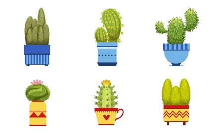 Cactus Plants in Flower Pots Set, Potted Cactuses and Succulents Houseplants Vector Illustration
