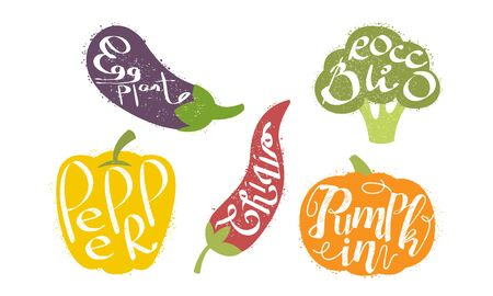 Fresh Vegetables Prints Set, Eggplant, Broccoli, Pepper, Pumpkin Grunge Style Vector Illustration