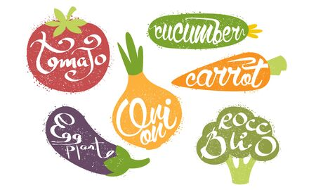 Fresh Vegetables Prints Set, Tomato, Cucumber, Carrot, Eggplant, Onion, Broccoli Grunge Style Vector Illustration Stock Illustratie