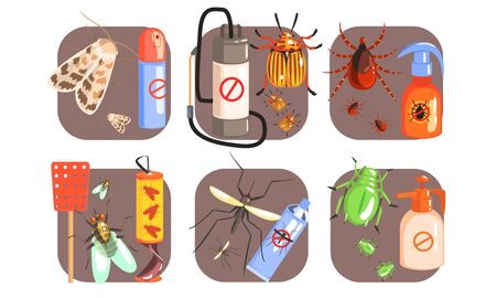 Pest Control Icons Set, Extermination of Harmful Insects, Moth, Tick, Colorado, Potato, Beetle, Fly, Mosquito Vector Illustration