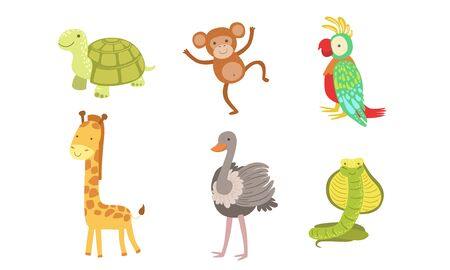 Cute African Animals Set, Turtle, Monkey, Parrot, Giraffe, Ostrich, Snake Vector Illustration 일러스트