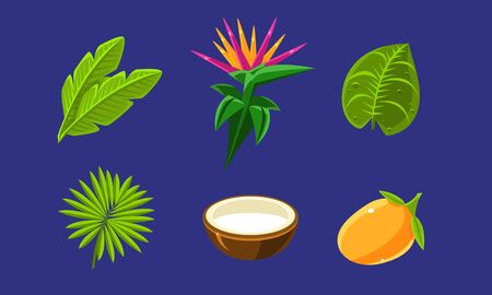 Collection of Bright Glossy Tropical Fruits, Flowers and Palm Leaves, Exotic Plants Vector Illustration