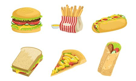 Collection of Fast Food, Takeaway Street Food Dishes, Burger, French Fries, Hot Dog, Sandwich, Pizza, Shawarma, Vector Illustration