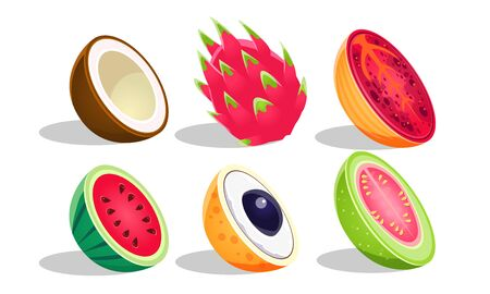 Tropical Fruits Set, Dragon Fruit, Coconut, Watermelon, Guava, Longan Vector Illustration Illustration