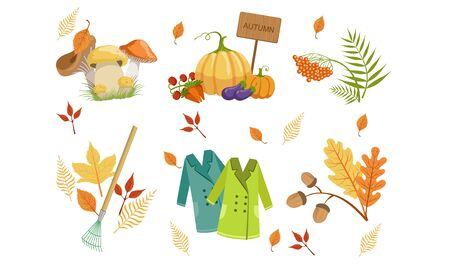 Autumn Season Objects Collection, Autumnal Design Elements, Mushrooms, Vegetables, Mountain Ash Leaves, Rake, Raincoats Vector Illustration Ilustrace