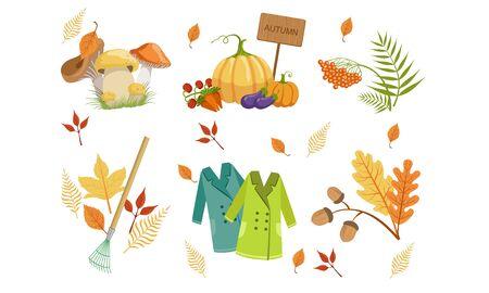 Autumn Season Objects Collection, Autumnal Design Elements, Mushrooms, Vegetables, Mountain Ash Leaves, Rake, Raincoats Vector Illustration Illustration