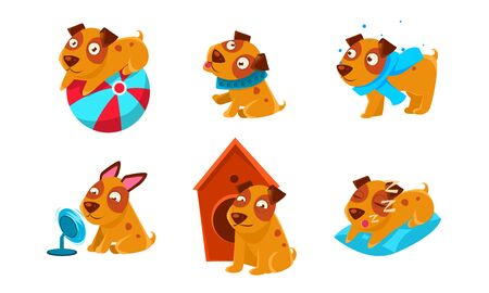 Cute Little Dog Cartoon Character Set, Funny Brown Puppy in Different Situations Vector Illustration