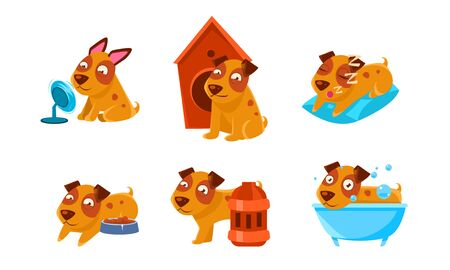 Cute Little Dog Character Set, Funny Brown Puppy in Different Situations Vector Illustration