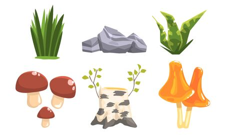 Nature Forest Landscape Elements Set, Plants, Stones, Birch Stump, Mushrooms Vector Illustration