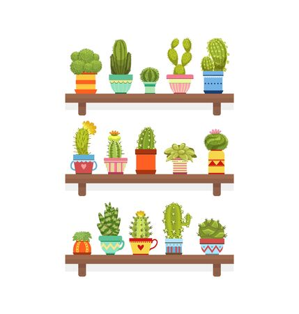 Cute Cactus and Succulent Plants on Wooden Shelves, Houseplants in Colorful Pots, Home or Office Decorative Element Vector Illustration