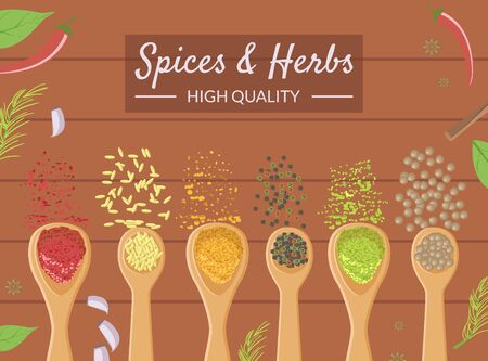 Spices and Herbs Banner Template, Different Cooking Spices in Wooden Spoons, Healthy Cooking High Quality Vector Illustration