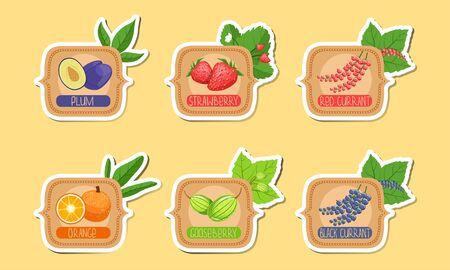 Homemade Jam Labels Set, Plum, Strawberry, Red Currant, Orange, Gooseberry, Black Currant Stickers Vector Illustration