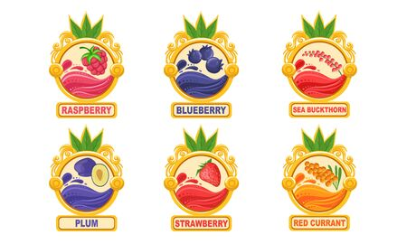 Organic Jam Labels Set, Plum, Strawberry, Red Currant, Raspberry, Blueberry, Sea Buckthorn Stickers Vector Illustration