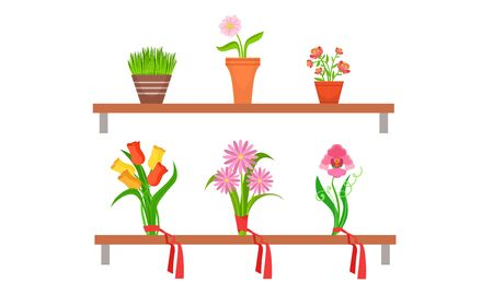 Collection of Potted House Plants and Bouquets on Wooden Shelves, Flower Shop Design Element Vector Illustration