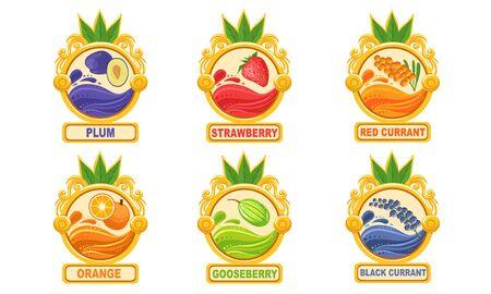 Organic Jam Labels Set, Plum, Strawberry, Red Currant, Orange, Gooseberry, Black Currant Stickers Vector Illustration