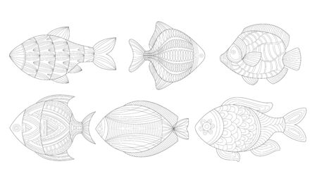 Set of antistress in the shape of fish. Vector illustration.