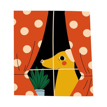 Yellow dog is sitting on the window with orange draped curtains and plant cartoon vector illustration on a white background