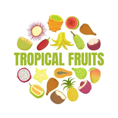 Tropical Fruits Banner Template with Fresh Ripe Exotic Fruit of Round Shape Vector Illustration, Web Design.