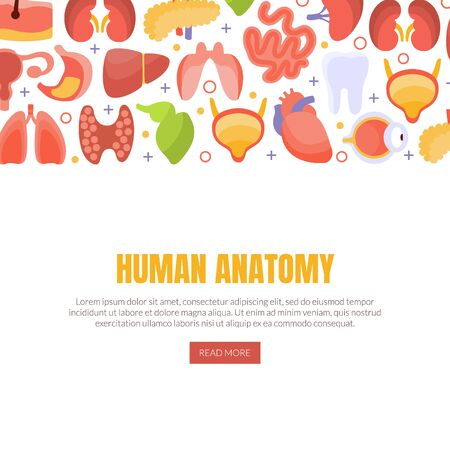 Human Anatomy Landing Page Template with Internal Organs, Healthcare and Medical Vector Illustration Ilustracja