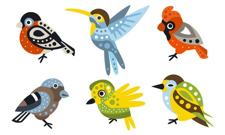Set of stylish birds of different species. Vector illustration on a white background.