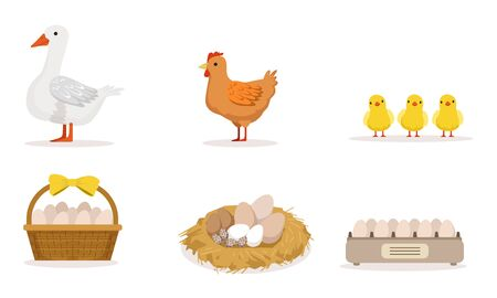 Poultry Farm With Goose, Hen, Three Little Baby Birds And Different Eggs Vector Illustration Set Isolated On White Background Ilustracja