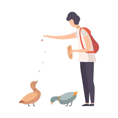 Young Woman Wearing T-shirt Standing and Feeding Wild Ducks in Park Vector Illustration Ilustração