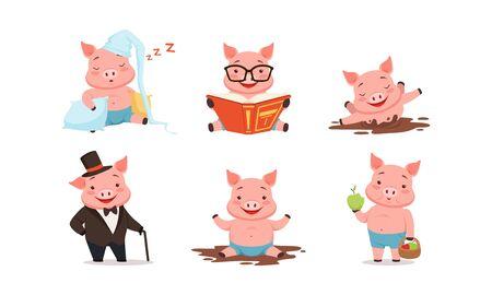 Personajes de cerdos divertidos durmiendo sobre almohadas y juego de libros de lectura