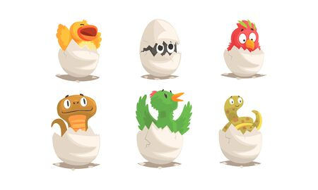 Cute Birds and Reptiles Hatching Vector Set. Cartoon New Born Creatures Collection