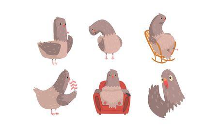 Funny Grey Pigeons Cartoon Characters Vector Set
