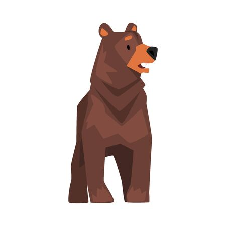 Cute Brown Grizzly Bear, Wild Animal Character, Front View Cartoon Vector illustration