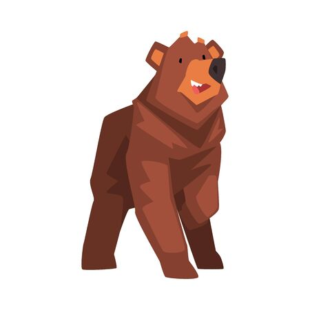 Cute Brown Bear, Wild Forest Animal Character Cartoon Vector illustration on White Background. Illusztráció