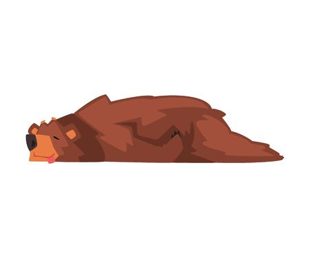 Cute Sleeping Brown Bear, Wild Forest Animal Character Cartoon Vector illustration on White Background. 向量圖像