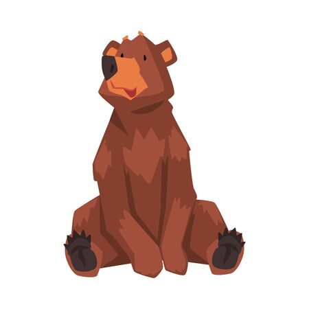 Cute Sitting Brown Bear, Wild Forest Animal Character Cartoon Vector illustration on White Background. Stock fotó - 137087169