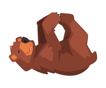 Cute Brown Bear Lying on His Back, Wild Forest Animal Character Cartoon Vector illustration on White Background.