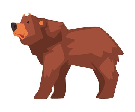 Cute Brown Bear, Wild Forest Animal Character, Side View Cartoon Vector illustration on White Background. Stock fotó - 137150652