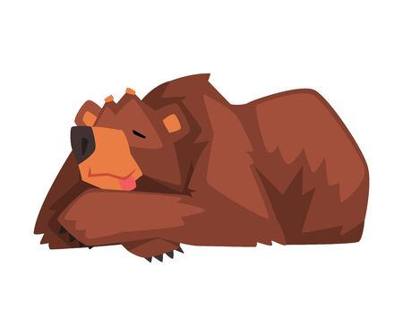 Sleeping Brown Bear, Cute Wild Forest Animal Character Cartoon Vector illustration on White Background.