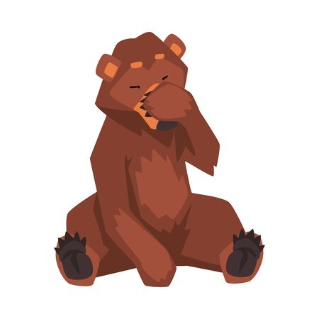 Brown Bear Sitting and Covering Muzzle with Its Paw, Wild Forest Animal Character Cartoon Vector illustration on White Background.