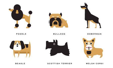 Breeds of Dogs Collection, Poodle, Bulldog, Doberman, Beagle, Scottish Terrier, Welsh Corgi Vector Illustration