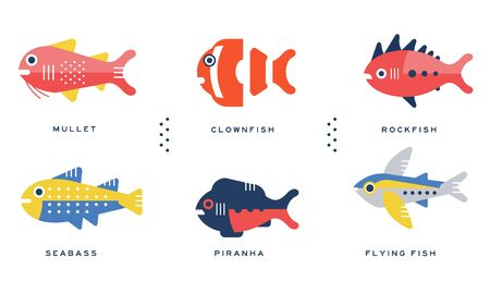 Sea and Ocean Fishes Collection, Mullet, Clownfish, Rockfish, Seabass, Piranha, Flying Fish Vector Illustration