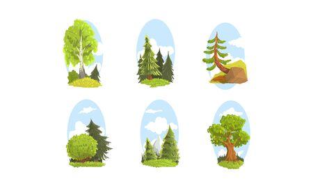 Beautiful Deciduous and Coniferous Green Trees, Summer Landscape Elements Vector Illustration