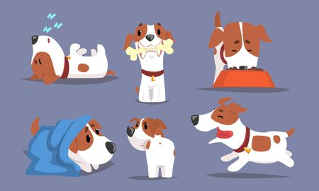 Cute Beagle Dog in Various Poses Collection, Funny Pet Animal Character Cartoon Vector Illustration