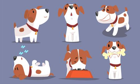 Cute Beagle Dog Collection, Funny Pet Animal Character in Different Situations Vector Illustration