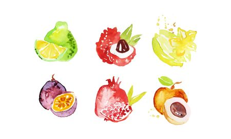 Juicy Ripe Tropical Fruit Collection, Pomelo, Lychee, Carambola, Pomegranate, Mangosteen, Peach Watercolor Hand Painting Vector Illustration on White Background.