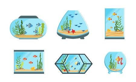 Collection of Aquarium Tanks of Different Shapes with Cute Fishes and Seaweeds Vector Illustration