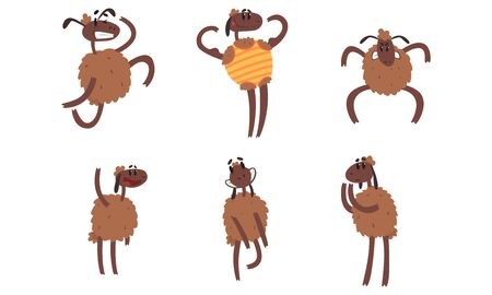 Funny Sheep Collection, Humanised Farm Animal Cartoon Character in Various Poses Vector Illustration on White Background. 向量圖像