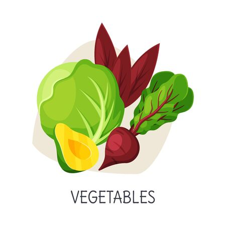 Healthy Food for Brain, Vegetables, Active Lifestyle, Healthy Diet Elements Vector Illustration on White Background.