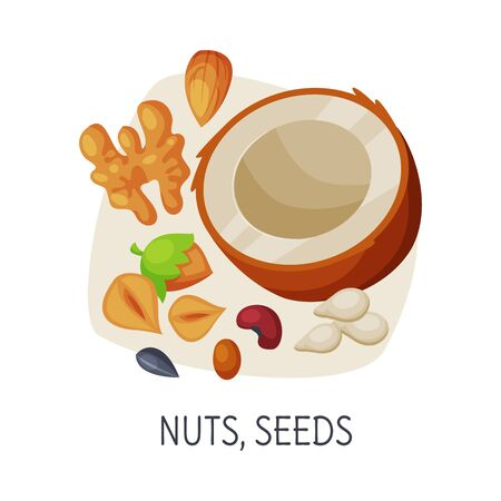 Healthy Food for Brain, Nuts and Seeds, Active Lifestyle, Healthy Diet Elements Vector Illustration on White Background.