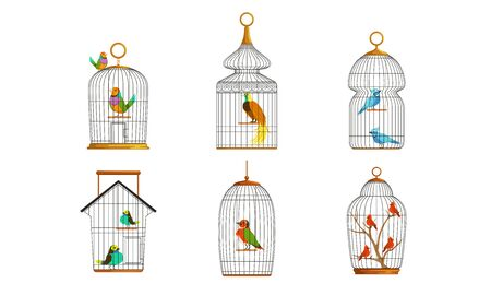 Exotic Birds in Iron Cages Collection, Cute Colorful Birdies Vector Illustration on White Background