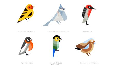 Colorful Stylized Birds Collection, Western Tanager, European Crested Tit, Myzomela, Flame Robin, Long Tailed Broadbill, Common Chaffinch Vector Illustration Isolated on White Background.